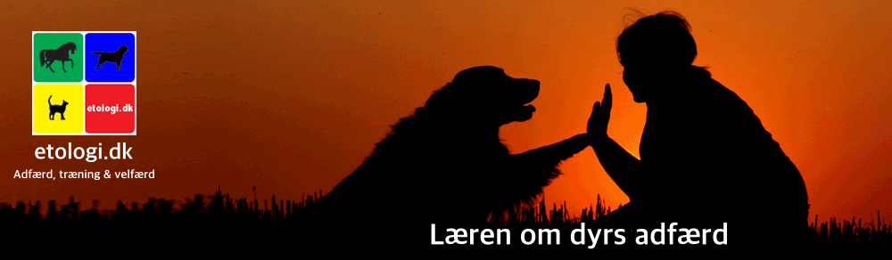 etologi.dk